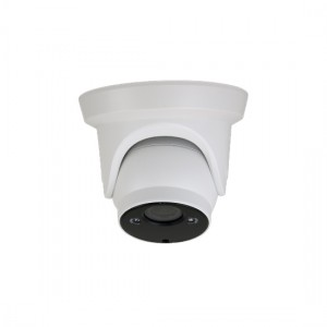 Vandal Proof AHD Multistandard Camera