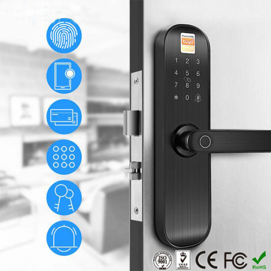 Smart Life WFi Electronic home/office/hotel lock with finger print , code and reader